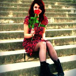 Rose.Dabos