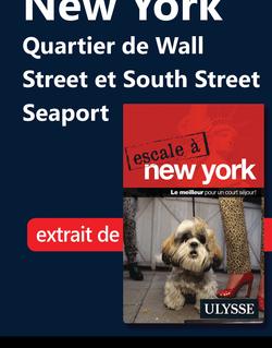 New York : Quartier de Wall Street et South Street Seaport