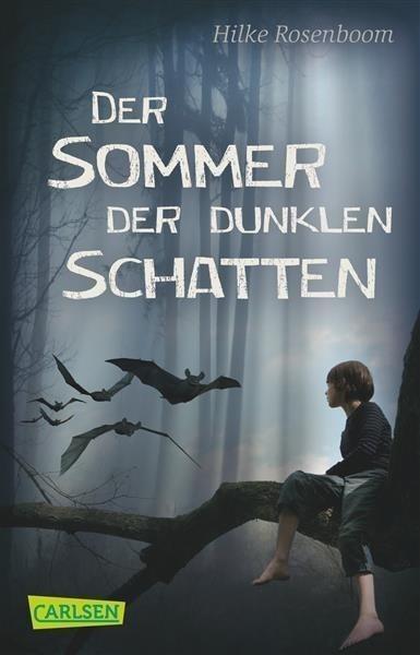Der Sommer der dunklen Schatten