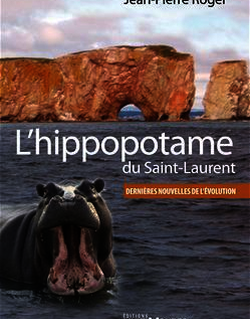 L'hippopotame du Saint-Laurent