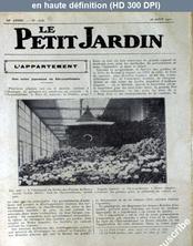 LE PETIT JARDIN  numéro 1325 du 25 août 1927