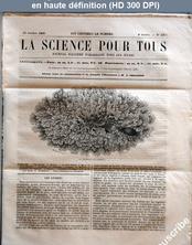 LA SCIENCE POUR TOUS  numéro 45 du 13 octobre 1859