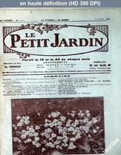 LE PETIT JARDIN  numéro 1252 du 10 août 1926
