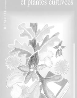Mycorhizes des arbres et plantes cultivées