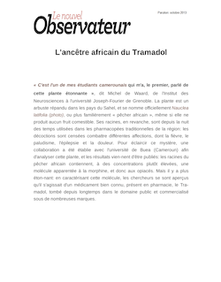 L'ancêtre africain du Tramadol