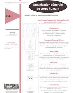 Fiche Bio 1 : Organisation générale du corps humain