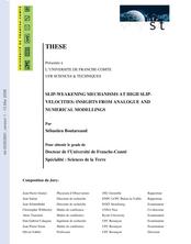 MECANISMES D'AFFAIBLISSEMENT À VITESSE DE CISAILLEMENT ELEVEE: EXEMPLES DE MODELES ANALOGUES ET NUMERIQUES