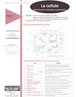 Fiche Bio 2 (1.2.3.) : La cellule, ultrastructure et échanges membranaires