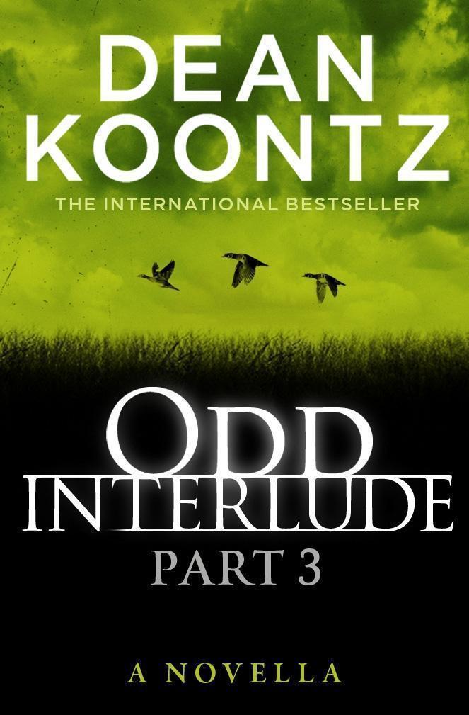 Odd Interlude Part Three