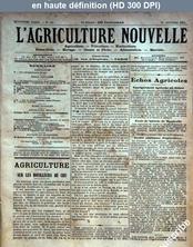 L' AGRICULTURE NOUVELLE  numéro 183 du 20 octobre 1894