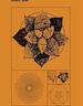Phytomathématique