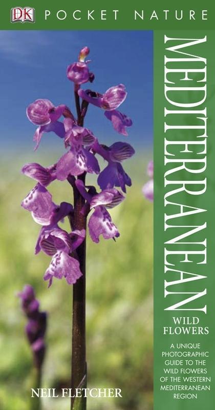 Mediterranean Wildflowers
