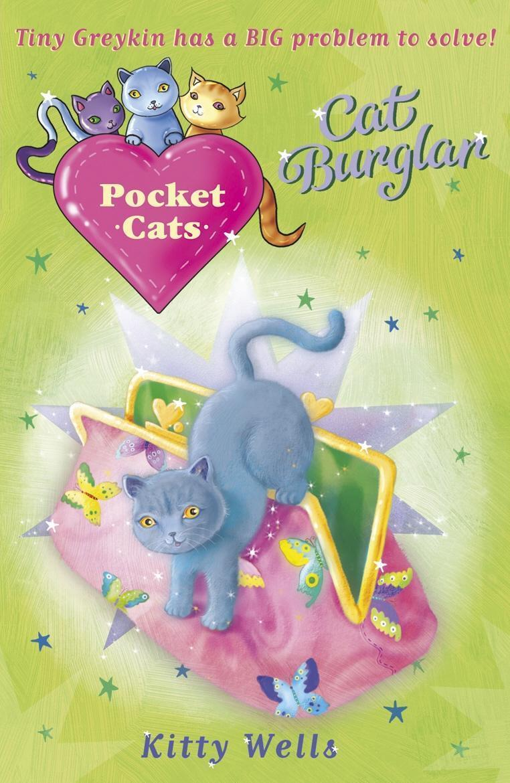 Pocket Cats: Cat Burglar