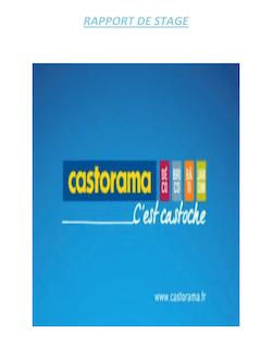 Rapport de stage mémoire complet Castorama Conseiller de vente