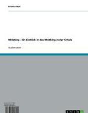 Mobbing - Ein Einblick in das Mobbing in der Schule