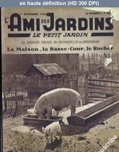 L' AMI DES JARDINS  du 01 novembre 1946