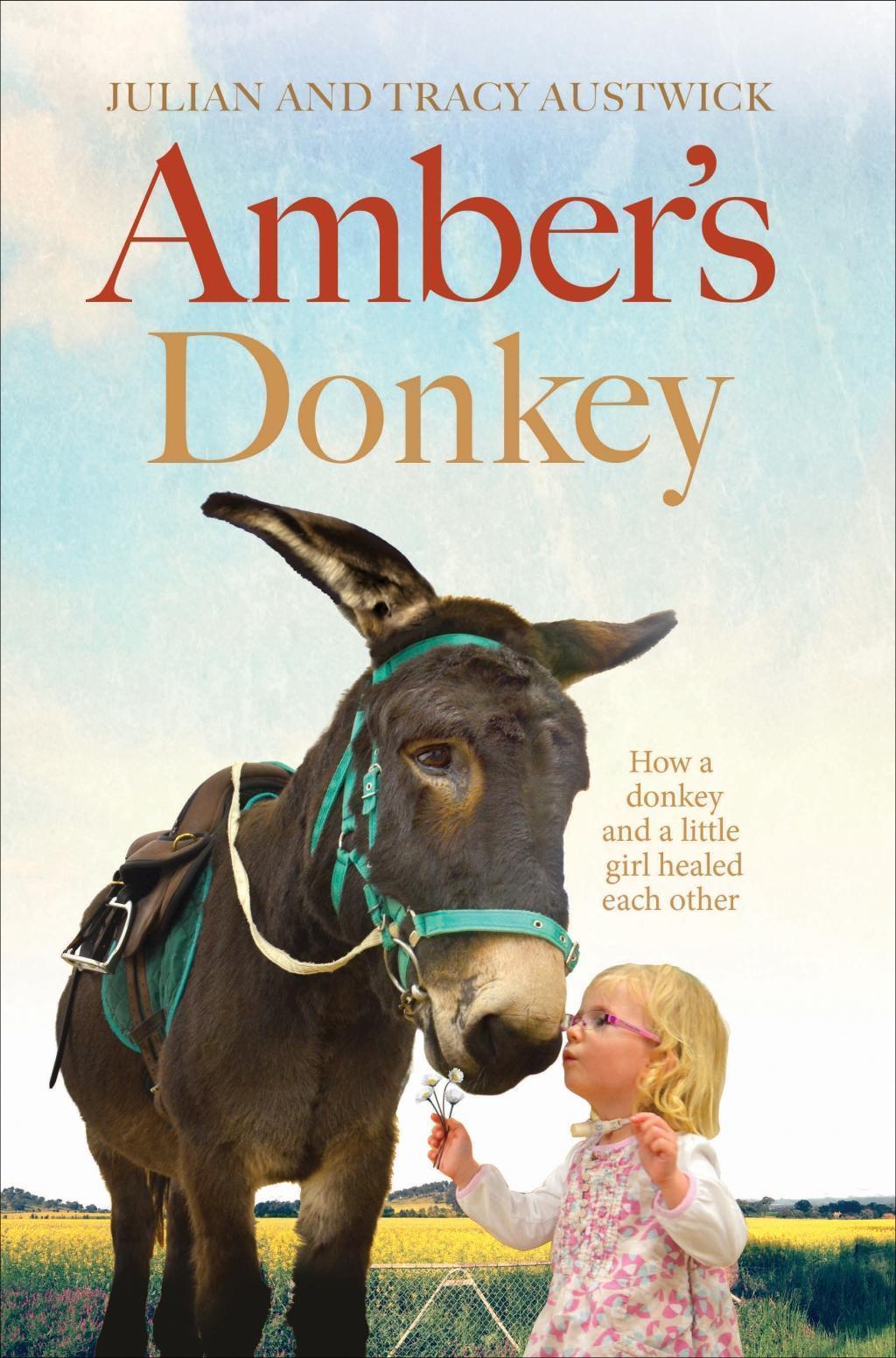 Amber's Donkey