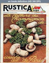 RUSTICA numéro 49 du 03 décembre 1950