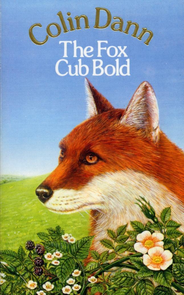The Fox Cub Bold