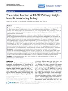 The ancient function of RB-E2F Pathway: insights from its evolutionary history