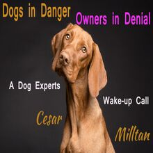 Dogs in Danger - Owners in Denial _ A Dog Expert