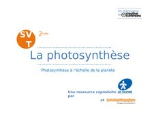 La photosynthèse (1)