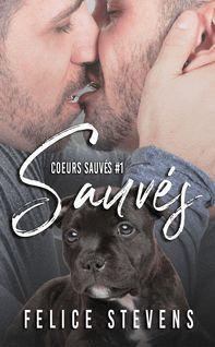 Sauvés - Trad Pitt, Felice Stevens