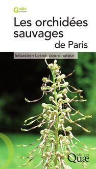 Les orchidées sauvages de Paris de Sébastien Lesné - fiche descriptive