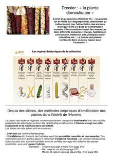 Dossier La Plante Domestiquée