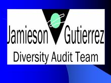 Tempe Diversity Audit Update Research Summary