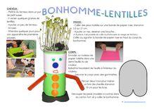 DDM CP/CE1 – Le vivant : la germination des végétaux - bonhomme lentilles