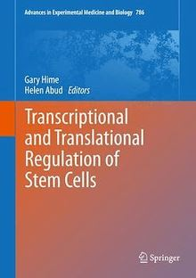 Transcriptional and Translational Regulation of Stem Cells