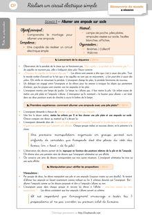DDM CP/CE1 – La matière : l'électricité - Séquence 1 – Le nez du clown, Fabien