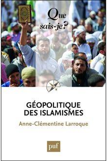 Géopolitique des islamismes de Anne-Clémentine Larroque - fiche descriptive