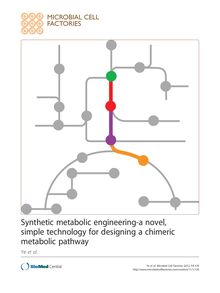 Synthetic metabolic engineering-a novel, simple technology for designing a chimeric metabolic pathway