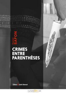 Crimes entre parenthèses de Daniel Safon - fiche descriptive