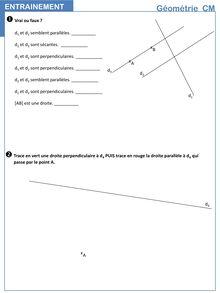 Vocabulaire de géométrie, parallèles et perpendiculaires