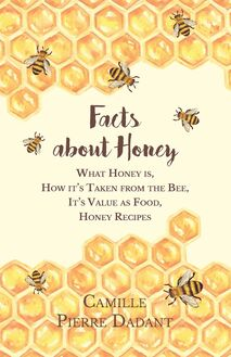 Facts about Honey - What Honey is, How it