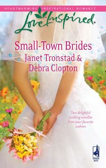 Small-Town Brides: A Dry Creek Wedding / A Mule Hollow Match (Mills & Boon Love Inspired) (Dry Creek, Book 12)