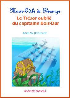 Le trésor oublié du capitaine Bois-Dur