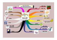 Les couleurs - Appendre l'anglais en ligne