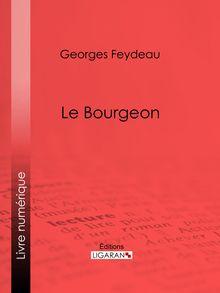 Le Bourgeon de Georges Feydeau, Ligaran - fiche descriptive