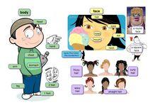 Les parties du corps humain - Apprendre l'anglais en ligne