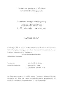 Endoderm lineage labelling using BAC reporter constructs in ES-cells and mouse embryos [Elektronische Ressource] / Sascha Imhof