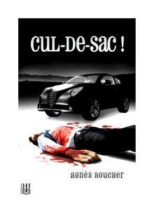Cul-de-sac ! de Agnès BOUCHER - fiche descriptive