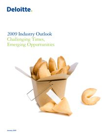 2009 Industry Outlook: Challenging times, emerging opportunities