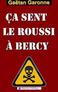 Ça sent le roussi à Bercy - Gaëtan Garonne