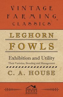 Leghorn Fowls - Exhibition and Utility - Their Varieties, Breeding and Management