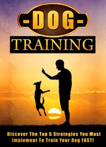 Dog Training Discover The Top 5 Strategies You Must Implement To Train Your Dog FAST!