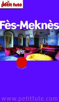 Fès - Meknès 2015 Petit Futé (avec cartes, photos + avis des lecteurs) de Dominique Auzias, Jean-Paul Labourdette - fiche descriptive